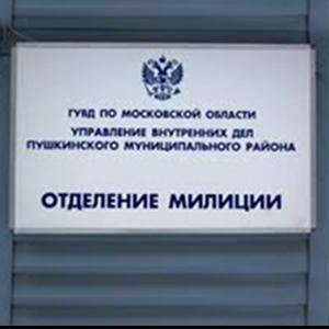 Отделения полиции Немчиновки