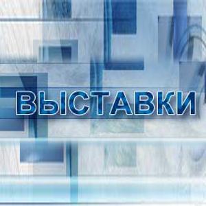 Выставки Немчиновки